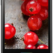 LG E460 Optimus L5 II Smartphone