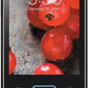 LG E430 Optimus L3 II Smartphone