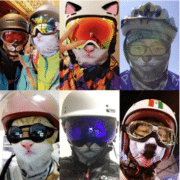 2019 02 04 16 00 21 Volle Gesichtsmaskenhüte des Tieres 3d breathable Fahrradski bei Banggood