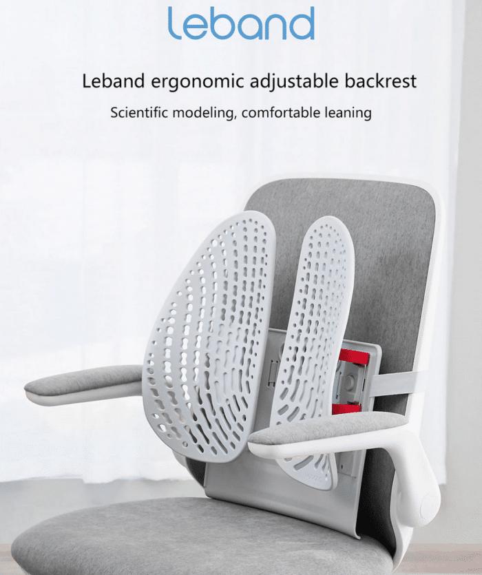 2021 03 17 10 59 26 LERAVAN Leband Neue Ergonomische Verstellbare Rueckenlehne Taille Korrektur Haltu