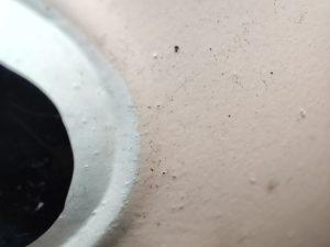 Poco F3 Makroaufnahmen