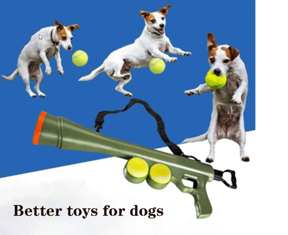 Pet Spielzeugpistole 2 Bälle