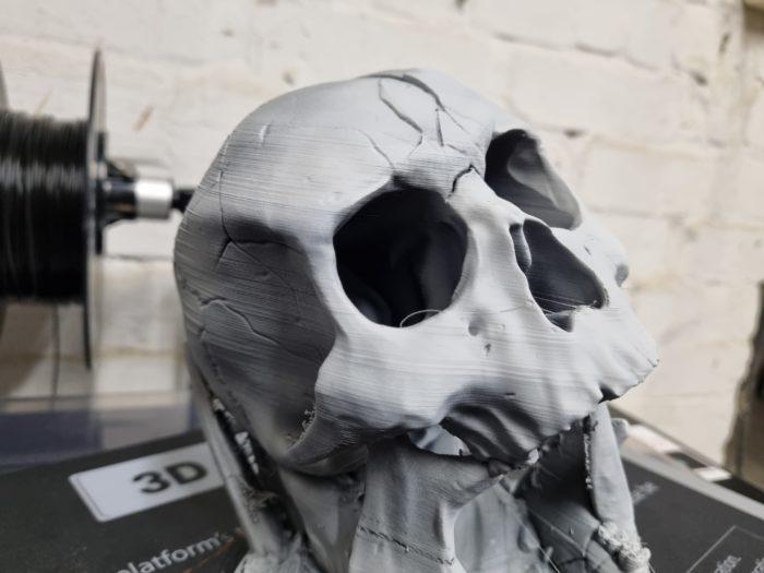 Qidi I-Fast Test Testdruck Totenkopf